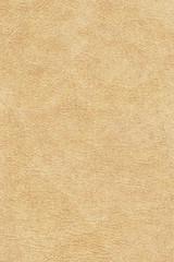 Antique Animal Skin Parchment Grunge Texture Sample