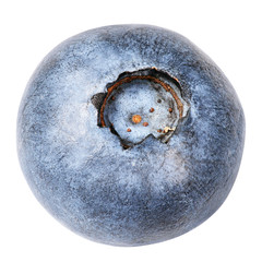 Blueberry berry isolated on white background with clipping path