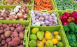 Different vegetables and fruits