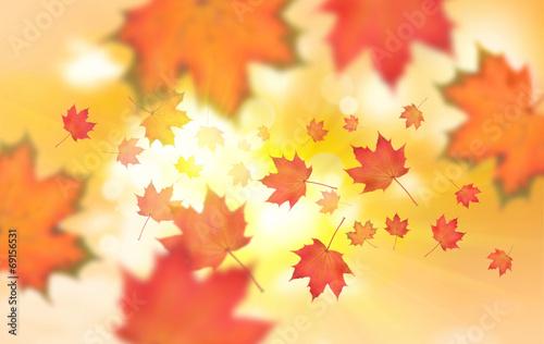 canvas print picture Herbstlaub vor Himmel