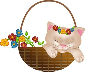 Kitten in basket with flowers