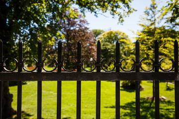 Old Black Iron Fence Around Garden
