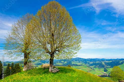 canvas print picture Rastplatz im Emmental