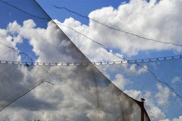 Wolken hinter Netz