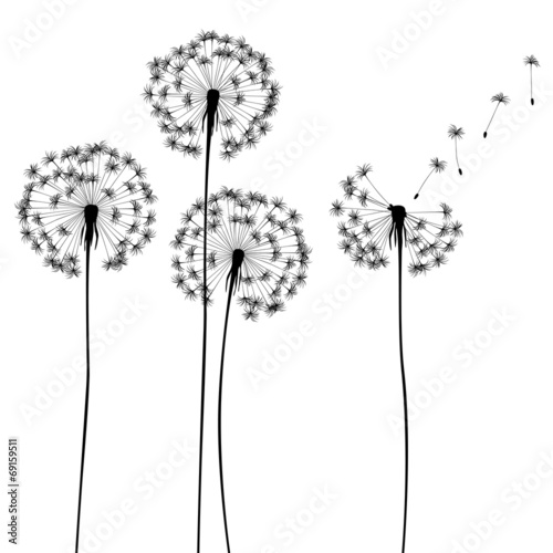 collection, for designers, plant vector - 69159511