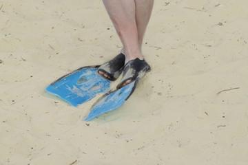 Legs in flippers