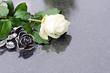 Weisse Rose und Rose aus Bronze auf Grabplatte, copyspace - 69163127
