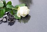 Weisse Rose und Rose aus Bronze auf Grabplatte, copyspace