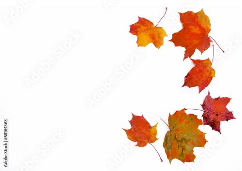 canvas print picture Rahmen aus Herbstlaub