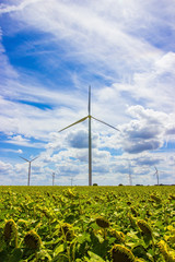 wind turbine energy and blue sky