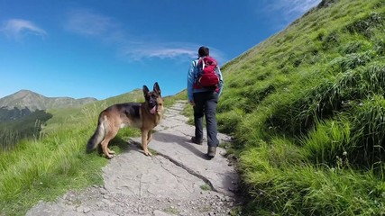 trekking with dog