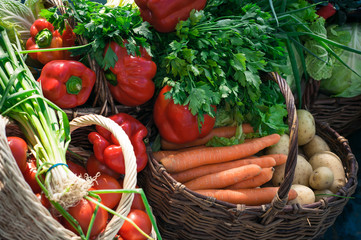 variety of vegetables in baskets