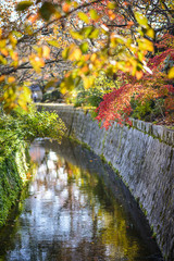 Philosopher's Path in Kyoto, Japan During Autumn