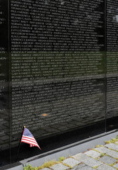 Vietnam Veterans Memorial, Washington DC, USA