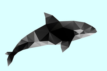Polygon abstract illustration of   killer whale