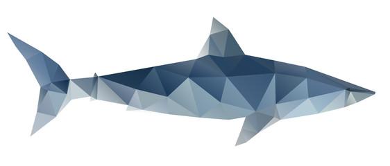 Polygon abstract illustration of shark