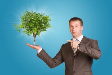 Businessman in a suit hold green tree