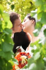 Glückliches Brautpaar küsst sich in den Weinbergen