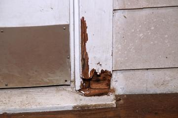 rotting door frame