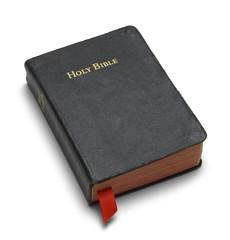 Black Holy Bible