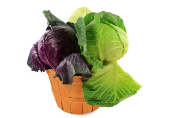 Heads red, green, and white flat cabbage in bushel