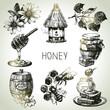 Obrazy na płótnie, fototapety, zdjęcia, fotoobrazy drukowane : Honey set. Hand drawn vintage illustrations