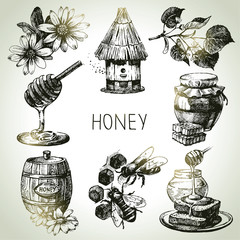 Honey set. Hand drawn vintage illustrations