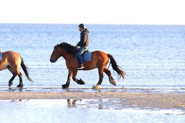 Morgendlicher Ausritt, Ostseestrand, Junge, Pferd