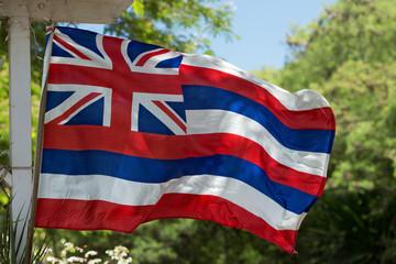Hawaii flag weaving