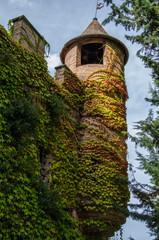 Torretta del Castello della pallotta con edera