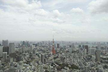 東京 遠景