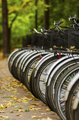 Bicycles in autumn