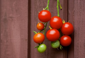 Cluster of tomatoes with wooden background.