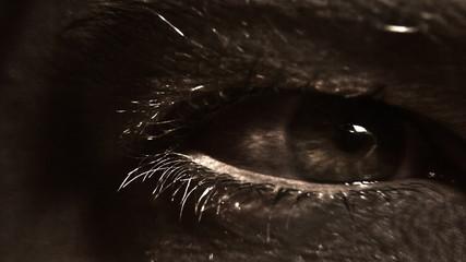 Eye dark creature