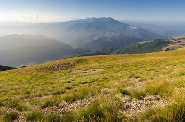 Monti della Laga e gregge