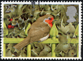 stamp printed in United Kingdom shows image of a robin