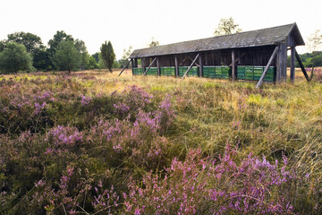 Bienenstöcke in der Heide am Wilseder Berg