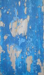 Blue wood texture fragments