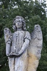 Cmentarny anioł