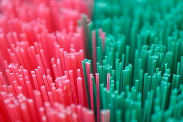 Detail and abstract view of red green broom as texture