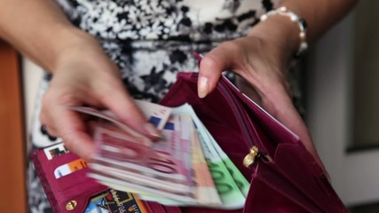 purse, ladies hand, the euro of various denominations