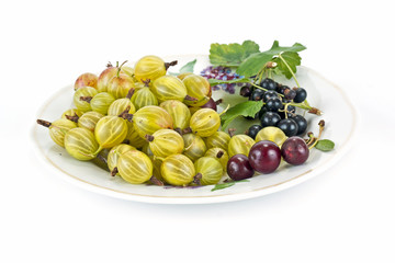 Gooseberries, cherries and black currants