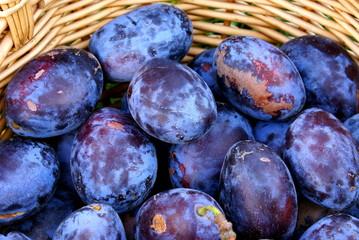 Plum fruits background