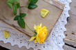 Yellow rose laying upon vintage book on lace doily
