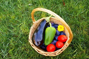 Basket with fresh vegetables and fruits