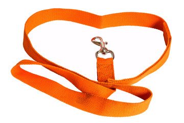 orange nylon dog lead on white background