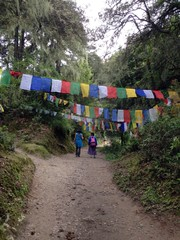 Hike up the mountain to Taktsang monastery in Paro, Bhutan