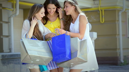 Girl shopaholics delight acquired fantastic fashionable things