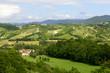 canvas print picture - Summer landscape in Monferrato (Italy)
