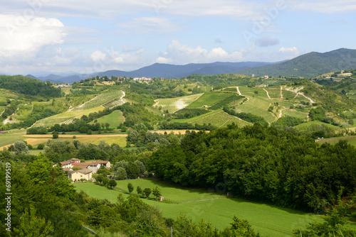 canvas print picture Summer landscape in Monferrato (Italy)